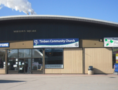 Timber's Church